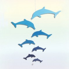 Dolphin Wings