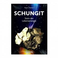 Schungit - Stein der Lebensenergie - Regina Martino - Buch