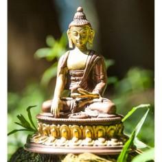 Shakyamuni 12cm Messing Buddha